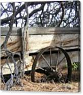 Retired Farm Wagon Canvas Print