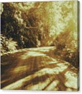 Retro Rainforest Road Canvas Print