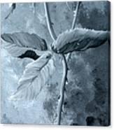 Retro Rose Canvas Print