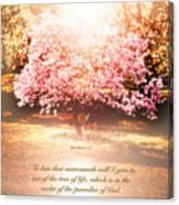 Revelation Tree Of Life Canvas Print