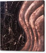 Reverberation Canvas Print