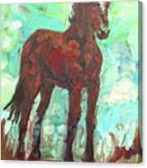Rezpony Canvas Print