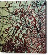 Rfb0204 Canvas Print