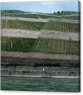 Rhine Valley Vineyards Panorama Canvas Print