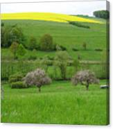Rhineland-palatinate Summer Meadow With Cherry Trees Canvas Print
