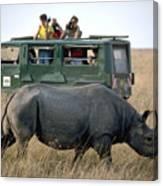 Rhino Inn Tanzania Canvas Print