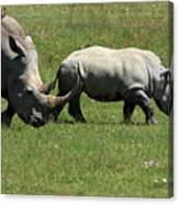 Rhino Mother And Calf - Kenya Canvas Print