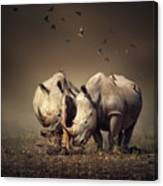 Rhino's With Birds Canvas Print