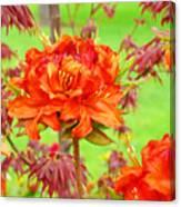 Rhododendron Flower Landscape Art Prints Floral Baslee Troutman Canvas Print