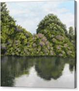 Rhododendrons By The River Canvas Print