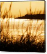 Rhos Point Viewed Through Beach Grass Canvas Print
