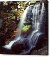 Ricketts Glen Falls 029 Canvas Print