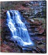 Ricketts Glen Waterfall 3941  Canvas Print