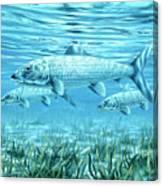 Ride The Tide Canvas Print