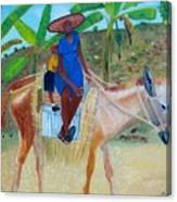 Ride To School On Donkey Back Canvas Print