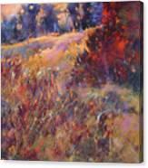 Ridgetop Display Canvas Print