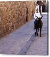 Riding A Donkey Canvas Print