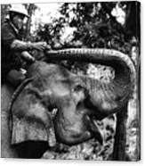 Riding The Elephant Canvas Print