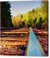 Riding The Rail Canvas Print