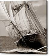 Riding The Wind -sepia Canvas Print