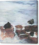 Riffles Canvas Print