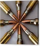Rifle Ammuntion Canvas Print
