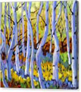 Rigaudon Of Aspens Canvas Print