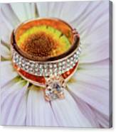 rings on white daisy love Valentine's Day  gerbera and wedding gold  Canvas Print