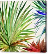 Rio Five Canvas Print