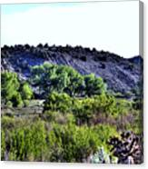 Rio Grande River Valley Canvas Print