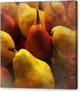 Ripe Pears And Two Persimmons Canvas Print
