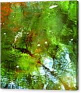 Ripple Effects Canvas Print