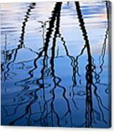 Rippled Reflections Canvas Print