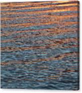 Ripples Of Zen Canvas Print