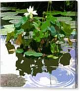Ripples On The Lotus Pond Canvas Print
