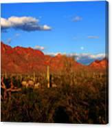 Rising Moon In Arizona Canvas Print