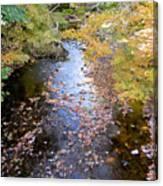 River 3 Canvas Print