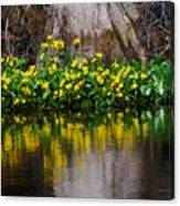 River And Flowers Closeup Canvas Print