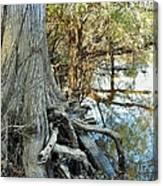 River Art Canvas Print