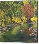 River At Hidden Acres 1. Canvas Print