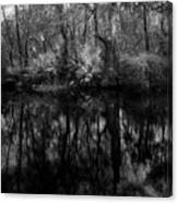 River Bank Palmetto Canvas Print