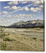 River Bed In Denali National Park Canvas Print