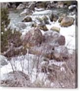 River Boulders Canvas Print