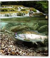 River Chrome Canvas Print