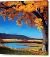 River Cottonwood Canvas Print