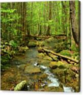 River Crossing On The Maryland Appalachian Trail Canvas Print