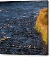 River Edge Canvas Print
