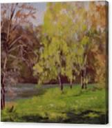 River Forks Spring 2 Canvas Print