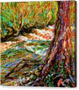 River Hafren In September Canvas Print