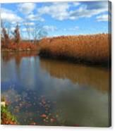 River Hudson Autumn Creek Canvas Print
